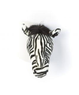 Trofeum zebra Daniel, Wild&Soft