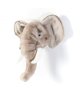 Trofeum słoń jasny George, Wild&Soft