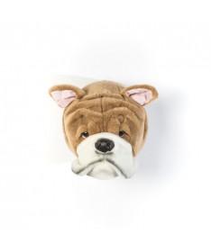 Trofeum pies bulldog angielski, Matthew, Wild&Soft