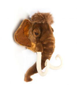 Trofeum mamut Arthur, Wild&Soft